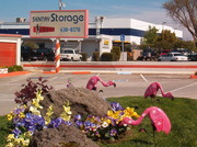 Sentry Storage - Sunrise - 11319 Folsom Blvd. Rancho Cordova, CA 95742