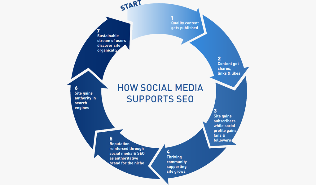 How SEO and Social Media Work Together to Build a Platform