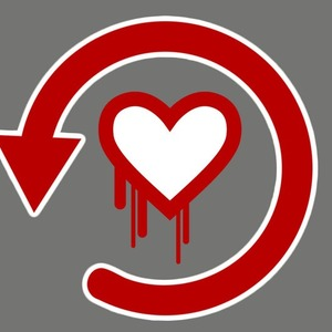 Guarding Your Self Storage Business Against Heartbleed