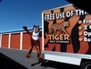 Tiger Self Storage #2 - Self Storage Unit in Sacramento, CA